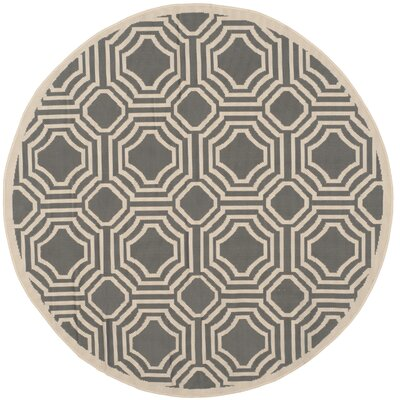 Yves Indoor/Outdoor Rug Rug Size: Round 5'
