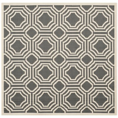Yves Indoor/Outdoor Rug Rug Size: Square 5'