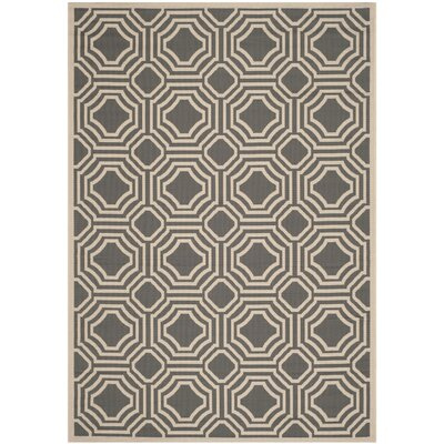 Yves Indoor/Outdoor Rug Rug Size: 67 x 96