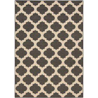 Odell Black Indoor/Outdoor Rug Rug size: 6 x 9