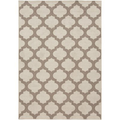 Odell Taupe Indoor/Outdoor Area Rug Rug size: Rectangle 53 x 76