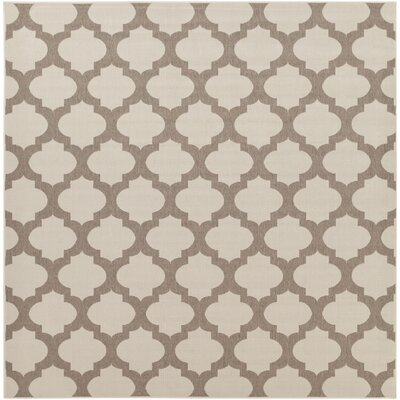 Odell Taupe Indoor/Outdoor Area Rug Rug size: Square 89