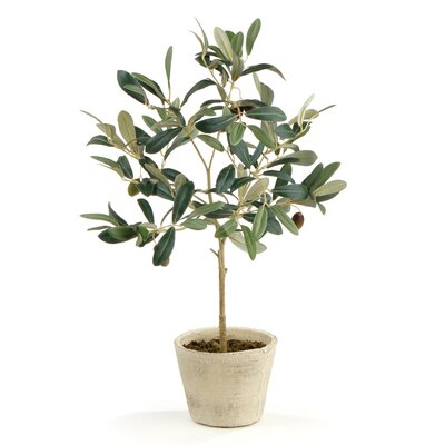 Faux Olive Potted Tree