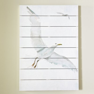 Soaring Gull Wall Art