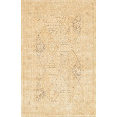 Miriam Rug Rug Size: Rectangle 76 x 105