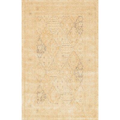 Miriam Rug Rug Size: 76 x 105