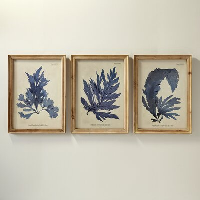 Vintage Fronds Framed Prints