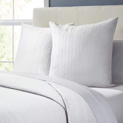 Delores Quilt Color: White, Size: King