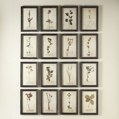 Framed Vintage Pressed Floral Prints
