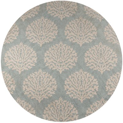 Hand-Woven Blue Indoor/Outdoor Area Rug Rug Size: Round 9