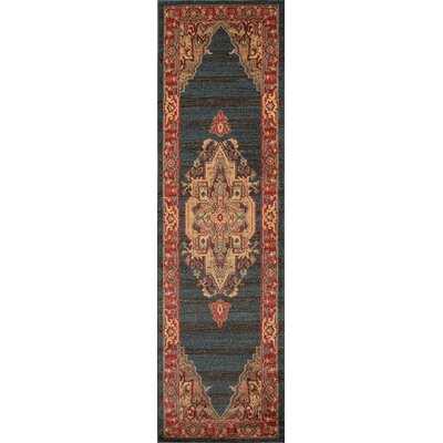 Othello Red Area Rug Rug Size: Runner 23 x 76