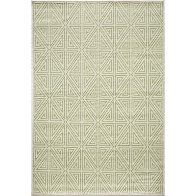 Solana Lime Green Indoor/Outdoor Area Rug Rug Size: 53 x 76