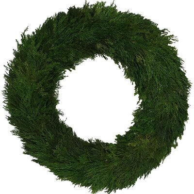 Avolina Cypress Wreath