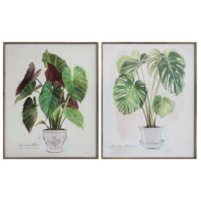 Potted Plants 2 Piece On Canvas Set