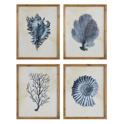 Sea Tresures Framed Prints
