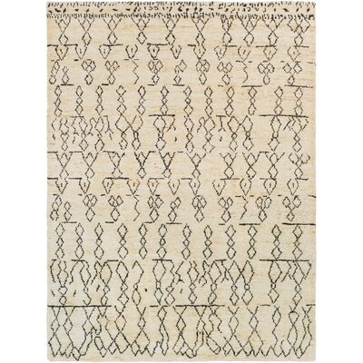 Sophia Hand-Woven Area Rug Rug Size: Rectangle 8 x 11
