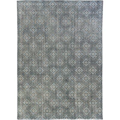 Cypress Hand-Knotted Wool in Blue Rug Size: Rectangle 9 x 13