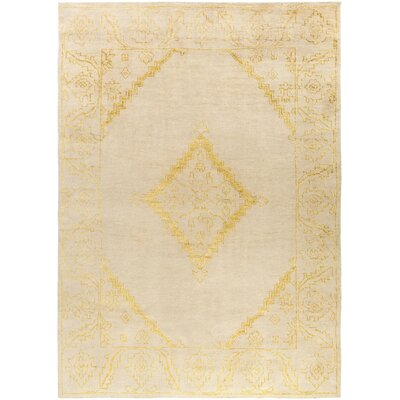 Desi Lime & Beige Rug Rug Size: Rectangle 2 x 3