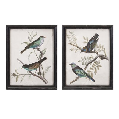 Birdwatcher Framed Prints