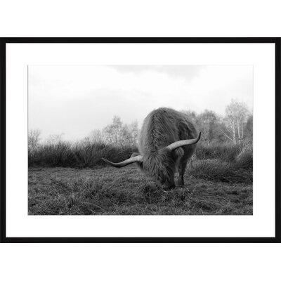 Yak, Framed Paper Print Size: Large, Frame Color: Black