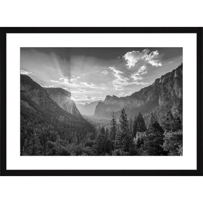 Yosemite National Park, Framed Paper Print Size: Large, Frame Color: Black