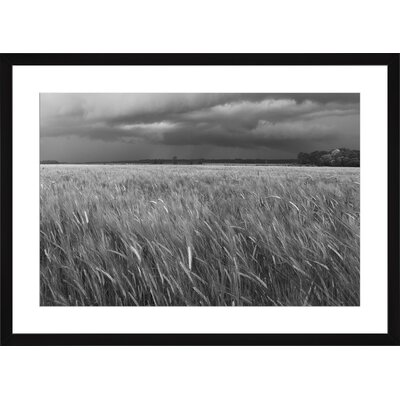Stormy Day, Framed Paper Print Size: Large, Frame Color: Black