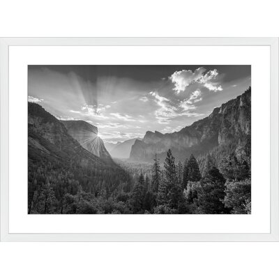 Yosemite National Park, Framed Paper Print Frame Color: White, Size: Large