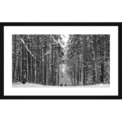 Pine Winter Forest, Framed Paper Print Size: 13