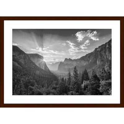 Yosemite National Park, Framed Paper Print Size: Large, Frame Color: Espresso