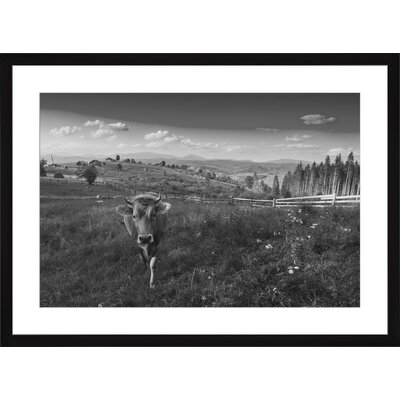 Cow in the Meadow, Framed Paper Print Size: 14