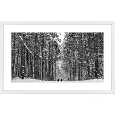 Pine Winter Forest, Framed Paper Print Frame Color: White, Size: 18