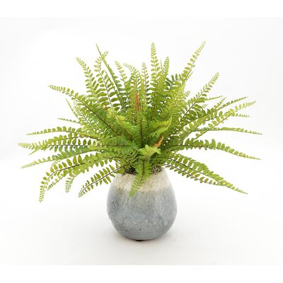 Faux Fern in Ceramic Vase