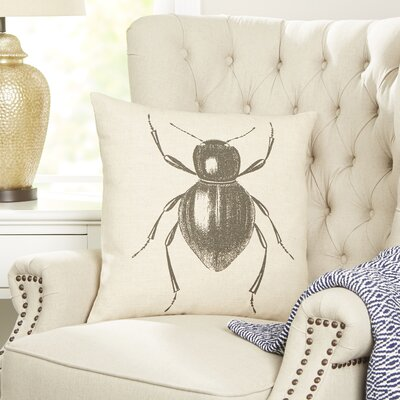 Beetle Entymology Pillow Cover