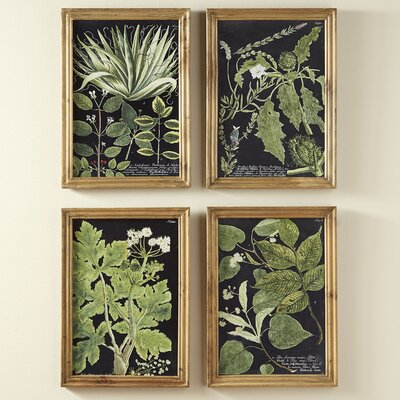 Foraging 4 Piece on Wood Set