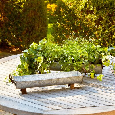 Water Trough Planters
