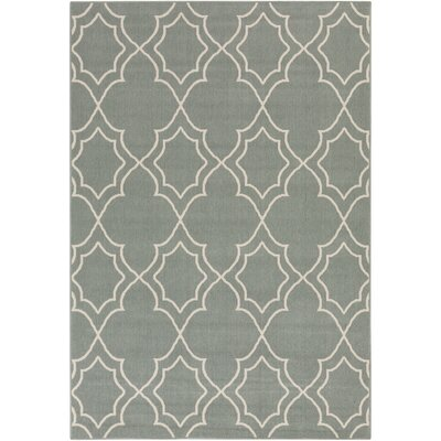 Amira Indoor/Outdoor Area Rug Rug Size: 53 x 76