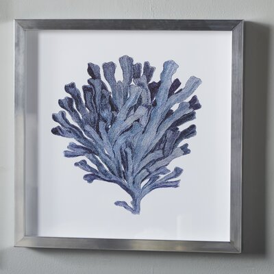 Indigo Coral Shadow Box III