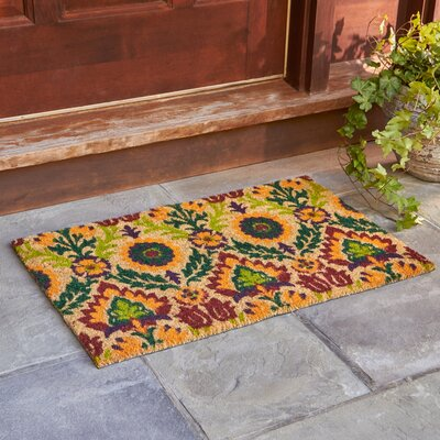 Andres Terra Welcome Doormat Rug Size: Rectangle 2 x 3