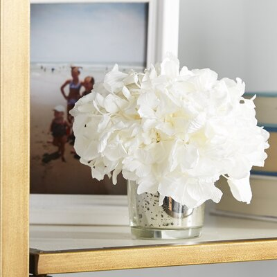 Hydrangea in Vase Flower Color: White