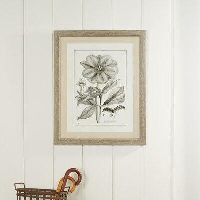 Tupelo Flower Framed Print I