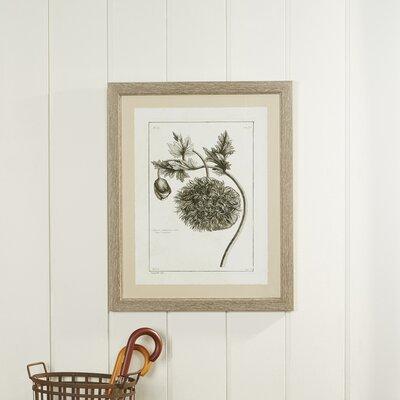 Tupelo Flower Framed Print II