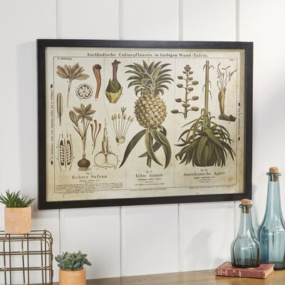 Scientific Yellows Framed Graphic Art