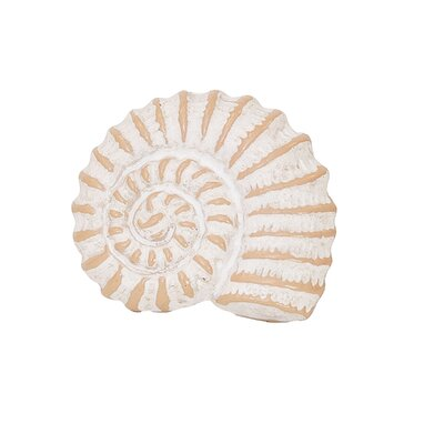 Seashell Napkin Rings (Set of 6) BL21647 34211741