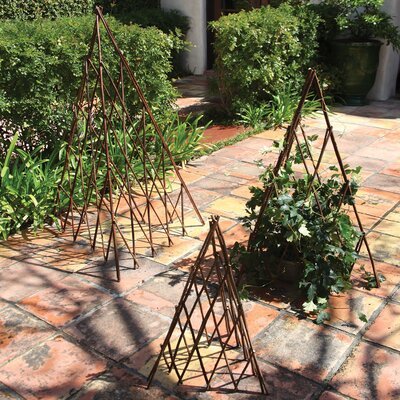 Natural Pyramid Trellis Size: Medium