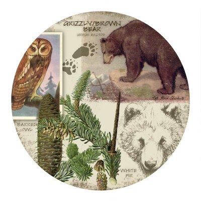 Bear Collage Coaster TSKT46