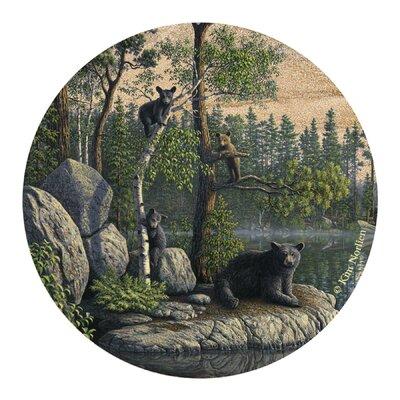 Bears Coaster TSNK1