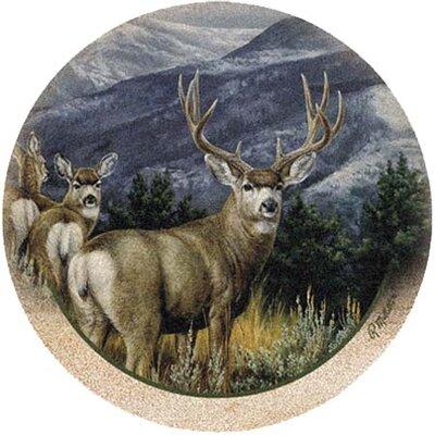Last Glance Mule Deer Coaster
