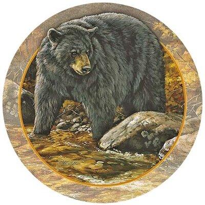 Bear Coaster TSRM3