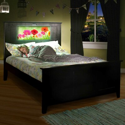 Shaker Panel Bed Finish: Satin Black, Size: Full