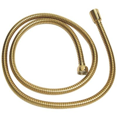 Vintage Shower Hose Finish: Polished Brass